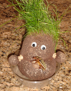 Mr. Grasshead with New Bug Friend
