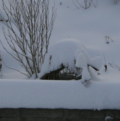More snow on fairy house