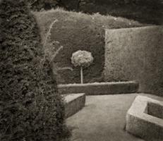 [a+garden]