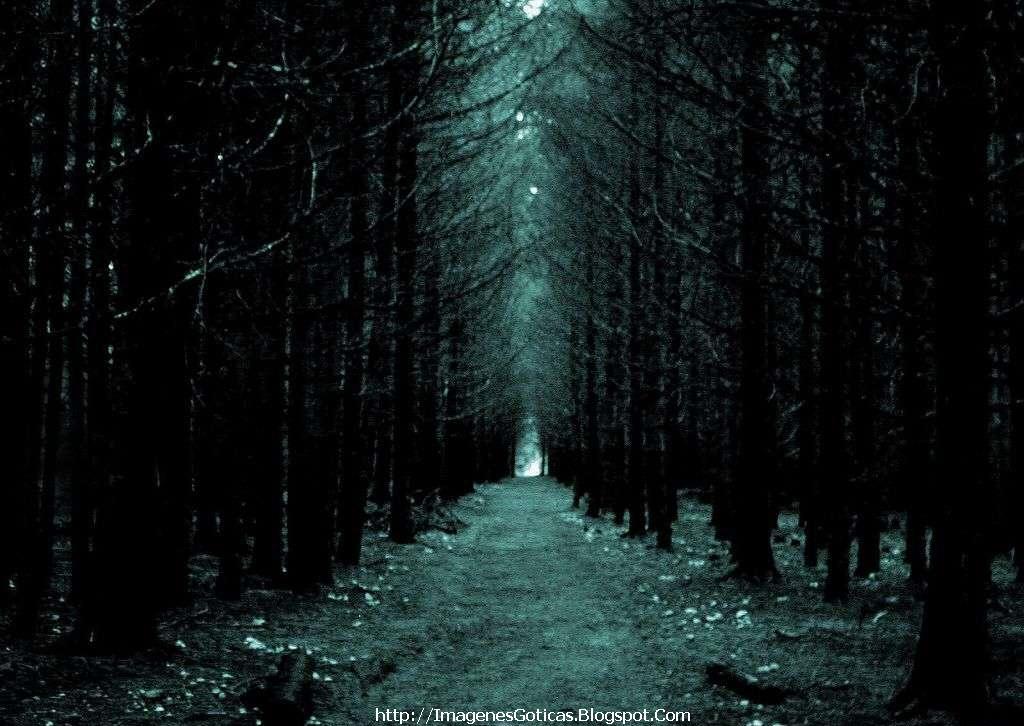 Wald.. Fondo%2Bg%C3%B3tico