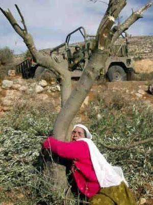 فلسطينية*لن نرحل* فلس%D