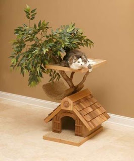 Leyendas mascotas y algo mas casa con arboles para gatos - Casas para gatos baratas ...