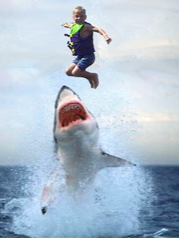 Executive Power Abuse >> Tuesday: Jumping the Shark | The Confluence