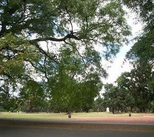 Plaza libertador, cerca de Kennedy