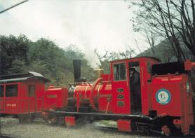 Tren rojo