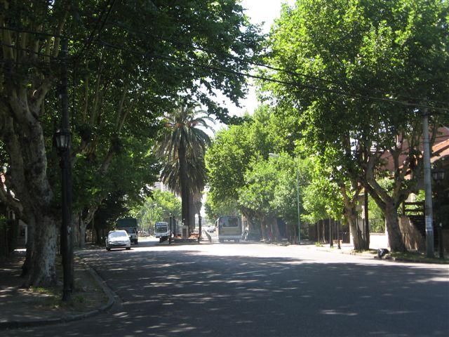 Av. Libertador - Tigre