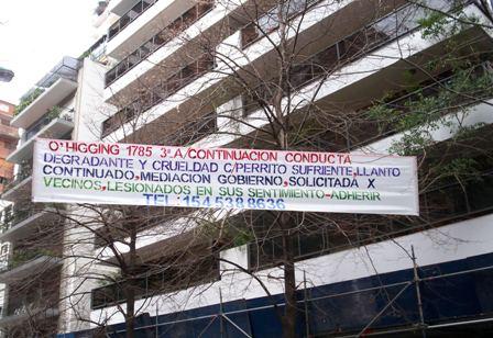 PERRITO LLORANDO PRESO EN BALCON