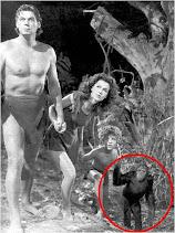 Tarzan y Cheeta