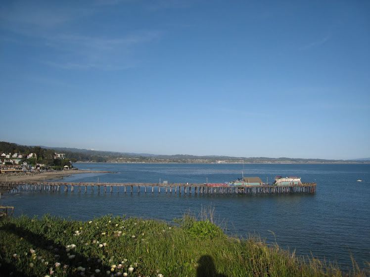 The Monterey Bay