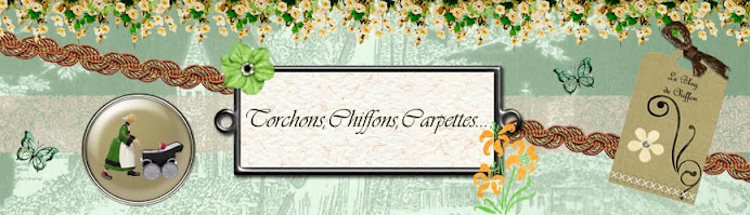 Torchons, Chiffons, Carpettes