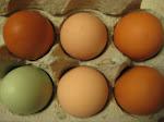 puro huevos...