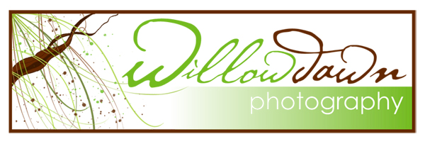 willowdawn photography