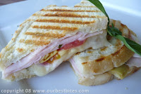 Smoked Turkey and Artichoke Panini