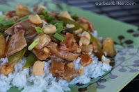 Cashew Sweet and Sour Pork