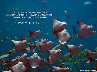 Salmos de la Bíblia - Salmo 91 - Salmo 23