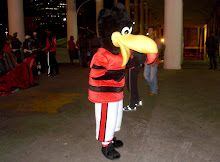 Black Vulture - Flamengo's mascot