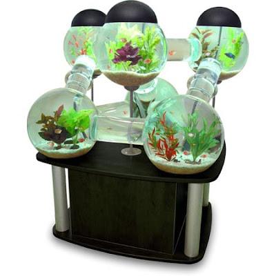 Cool Fish Tank   Silverfish Aquarium | Gadgets Are Cool | Gadget Blog