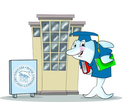 MySQL University