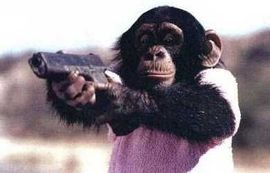 The Baltimore Spectator: UPDATED: Chimp Attack Update -- Family Sues