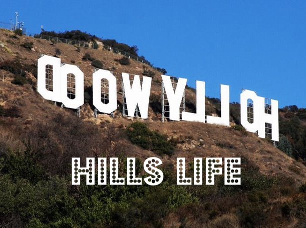 Hollywood Hills Life