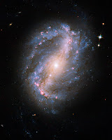 Galaxy NGC 6217