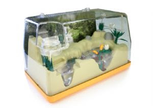 Backyard Safari Frog Habitat by Summit Toys