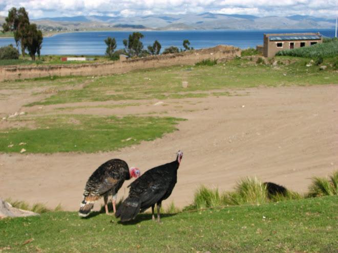 Entrada no Peru