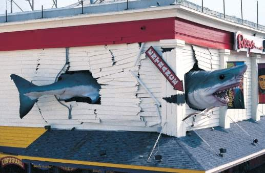 Shark Restaurant Ocean City Md