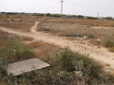 Orihuela Costa - rubbish and flytipping is common