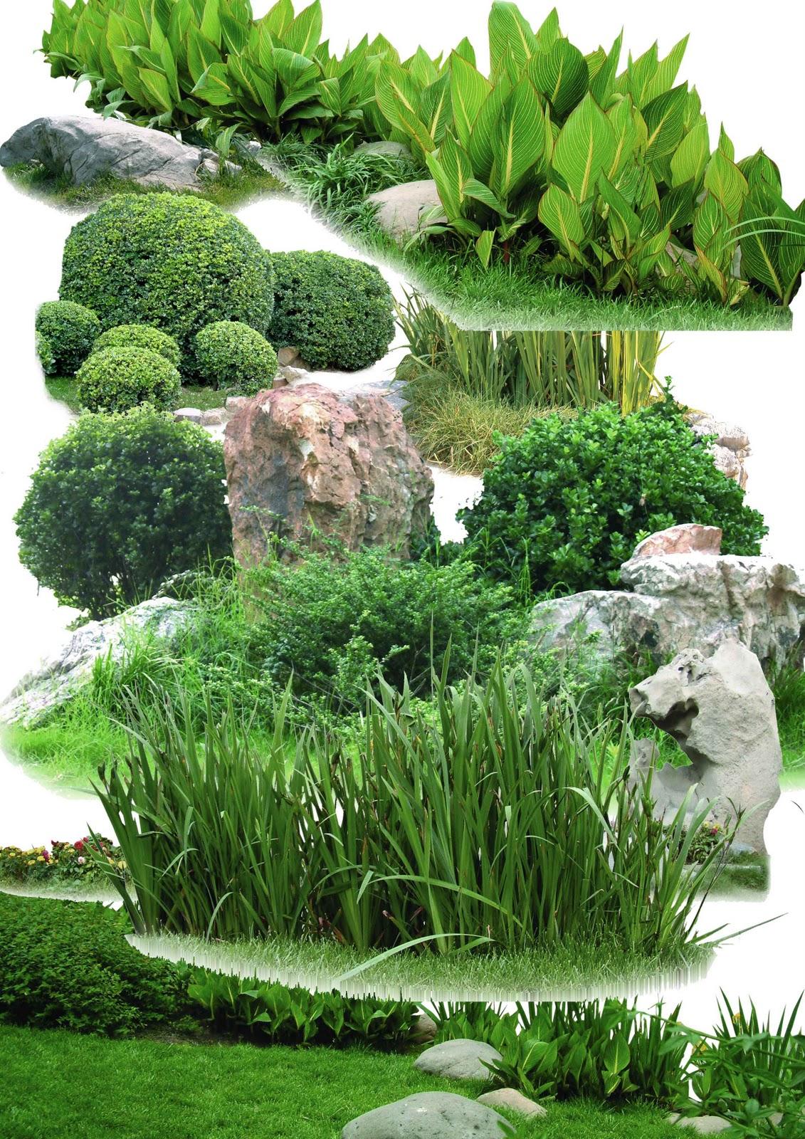 1000 Images About Landscape Planning On Pinterest