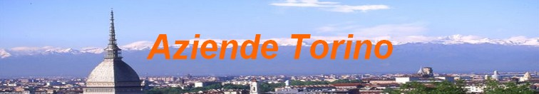 Aziende Torino
