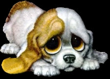 [Image: sad-eyes-dog.jpg]