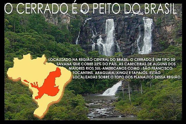 Resultado de imagem para cerrado a caixa d'água do brasil