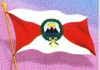 Primera Bandera Oficial.