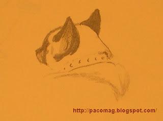 croquis dessins au crayon