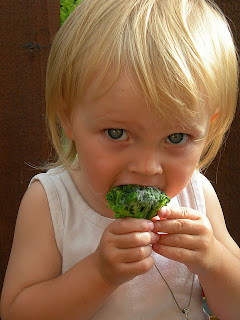 Healthy Snack Foods for Toddlers