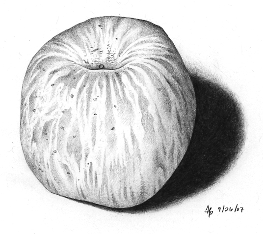 [apple-92607.jpg]