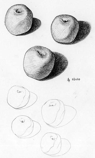 [apples-92707.jpg]