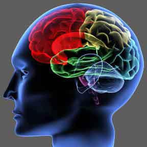 epilepsy_clip_image002