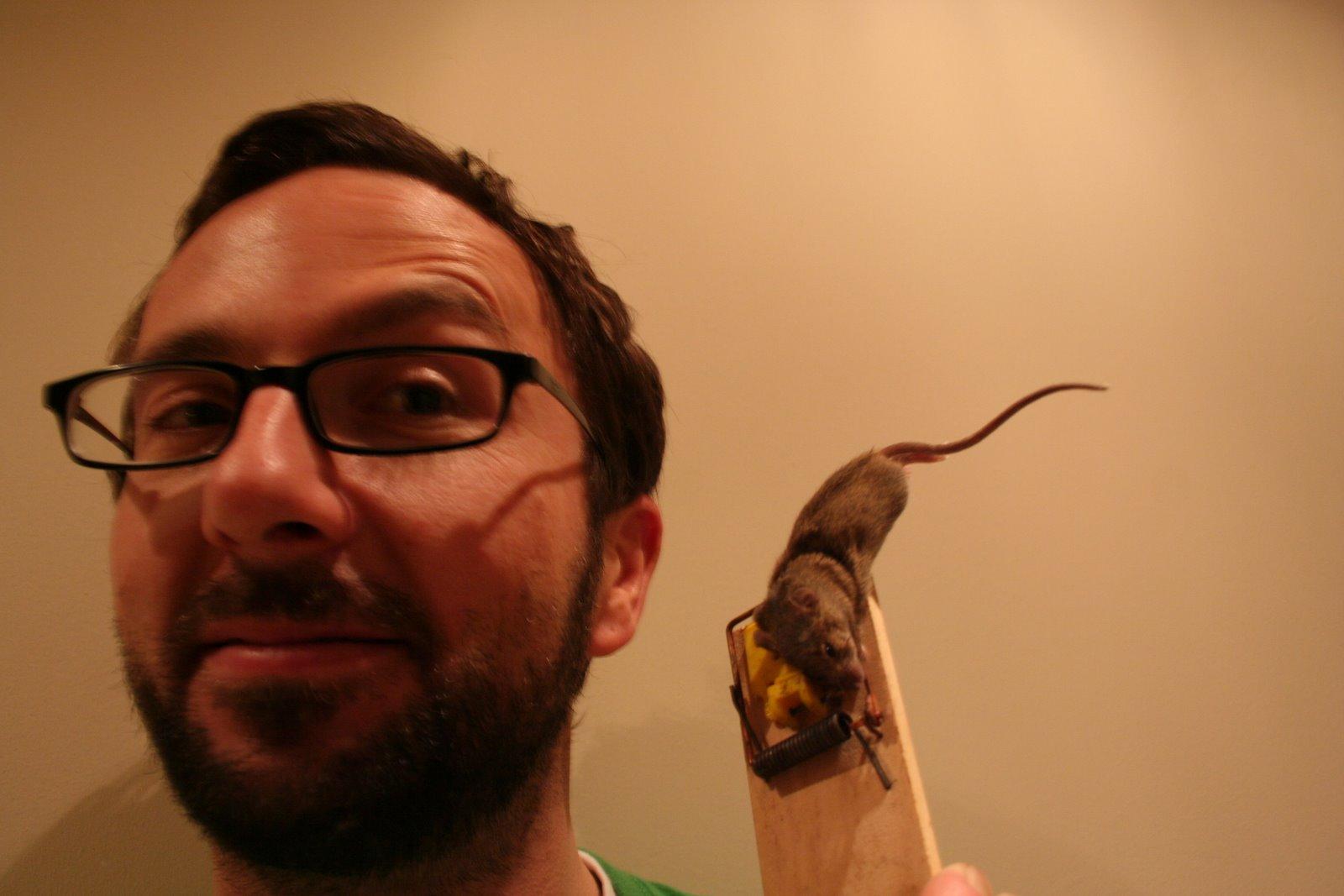 Tote Maus Hinter Küchenzeile ~ das irland abenteuer haustiere u2013 teil 4 u2013 die (tote) maus