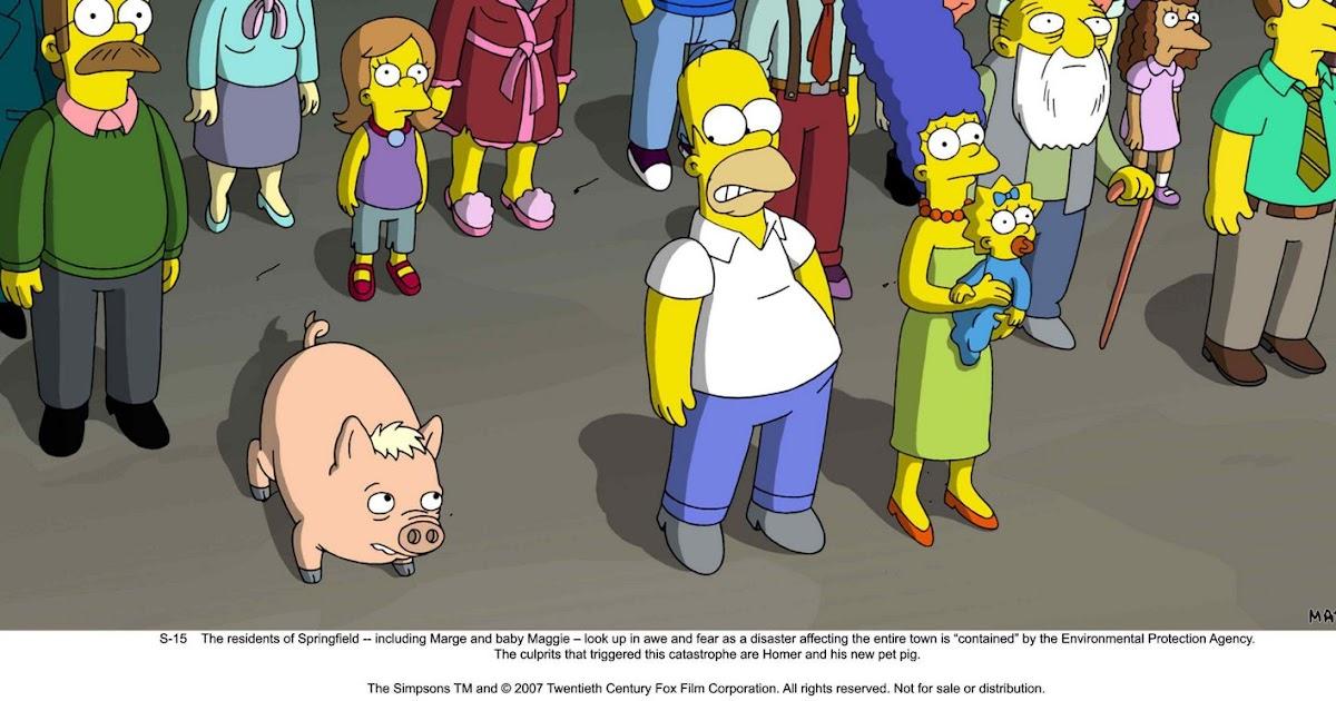 I Don T Like Renee Zellweger The Simpsons Movie 1 2