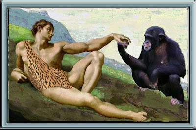 Adam and Chimp cousin. Humans share more than 98% of their DNA with the chimpanzee, our closest primate relative.