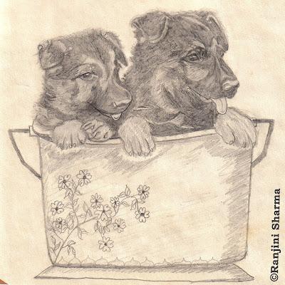 My Pencil Sketches Sulekha Creative