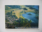 Aerial intervention (Woodstock & Blenheim Palace)