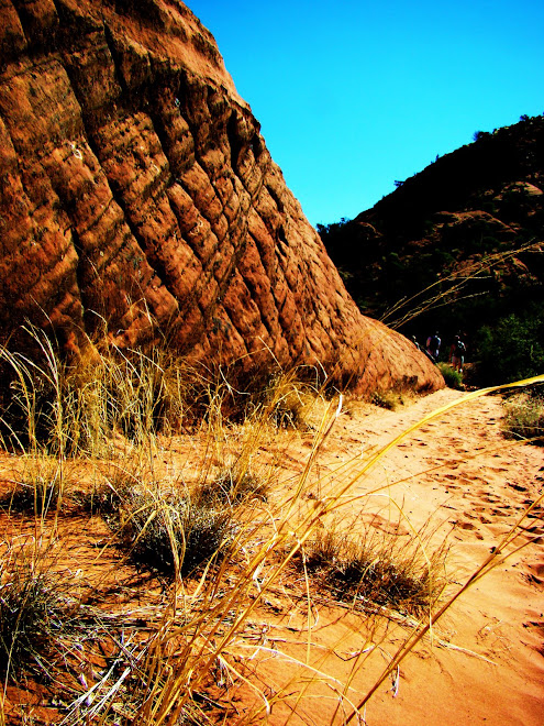 Wind Cut Sandstone - Sierra's Hike