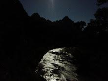 Moonlight in Zion NP '08