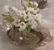 Kvist från vårt päronträd