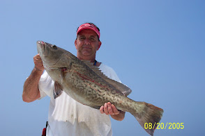 Typical Gag Grouper