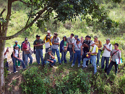 Grupo Bosques