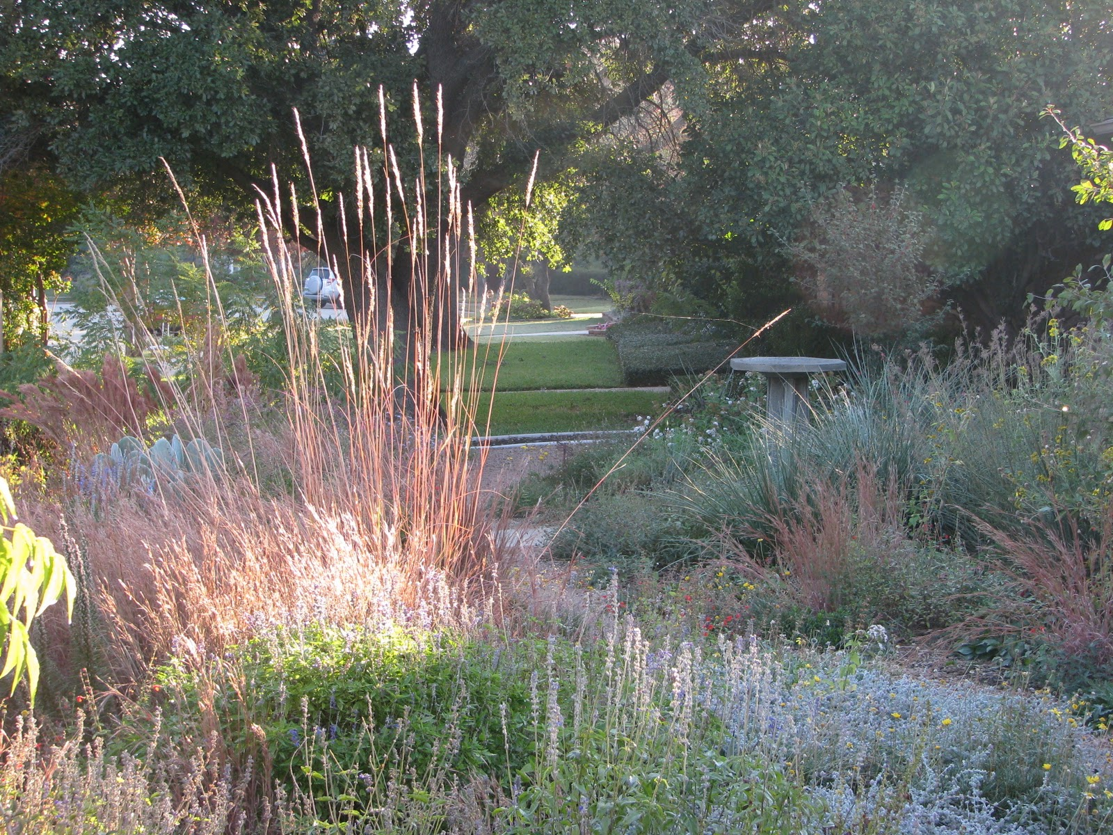 garden prairie hindu personals This prairie-inspired garden is a catalog of plants that midwestern settlers would have found when they arrived false blue indigo, wild petunia, prairie blazing star, and indian grass are just a sample in this varied garden.